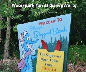 welcome to disney's blizzard beach