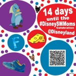 14 days till DisneySMMoms Celebration
