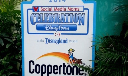 coppertone welcomes DSMMC