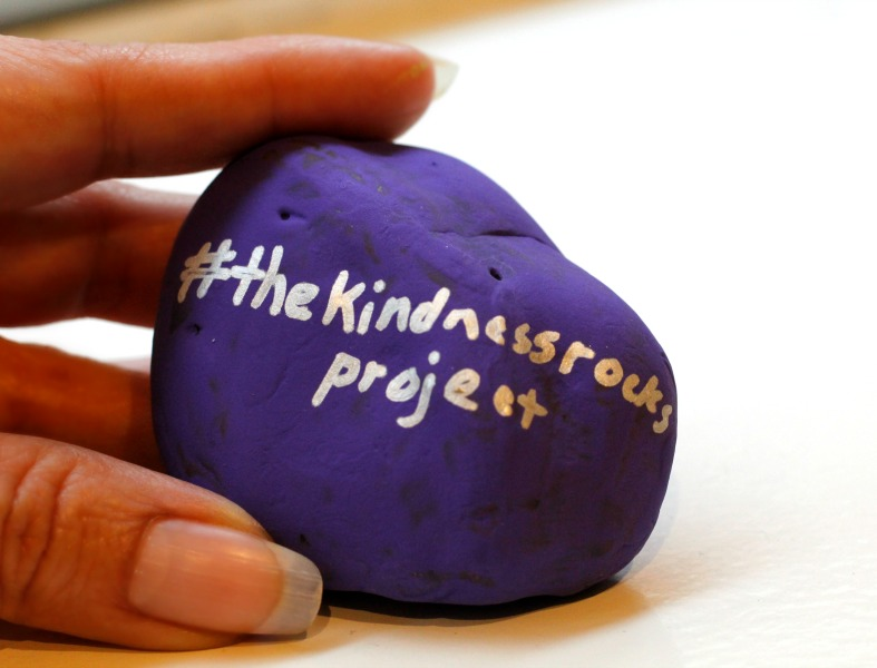 hashtag the kindness rocks project